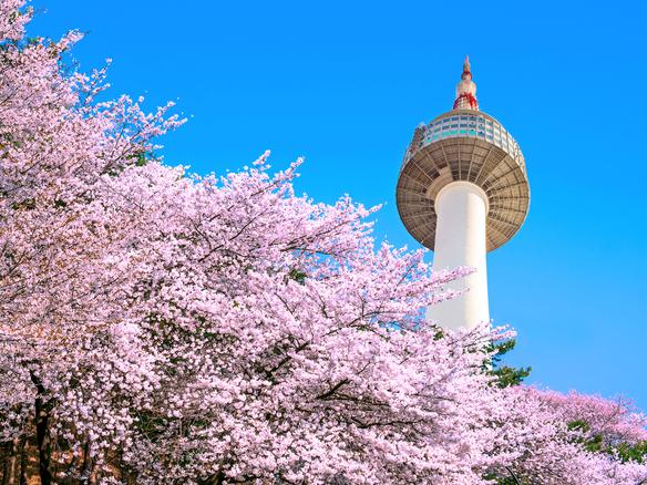 Kết quả hình ảnh cho namsan seoul tower